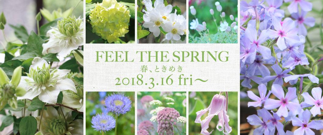 FEEL THE SPRING 春、ときめき 2018.3.16.fri〜