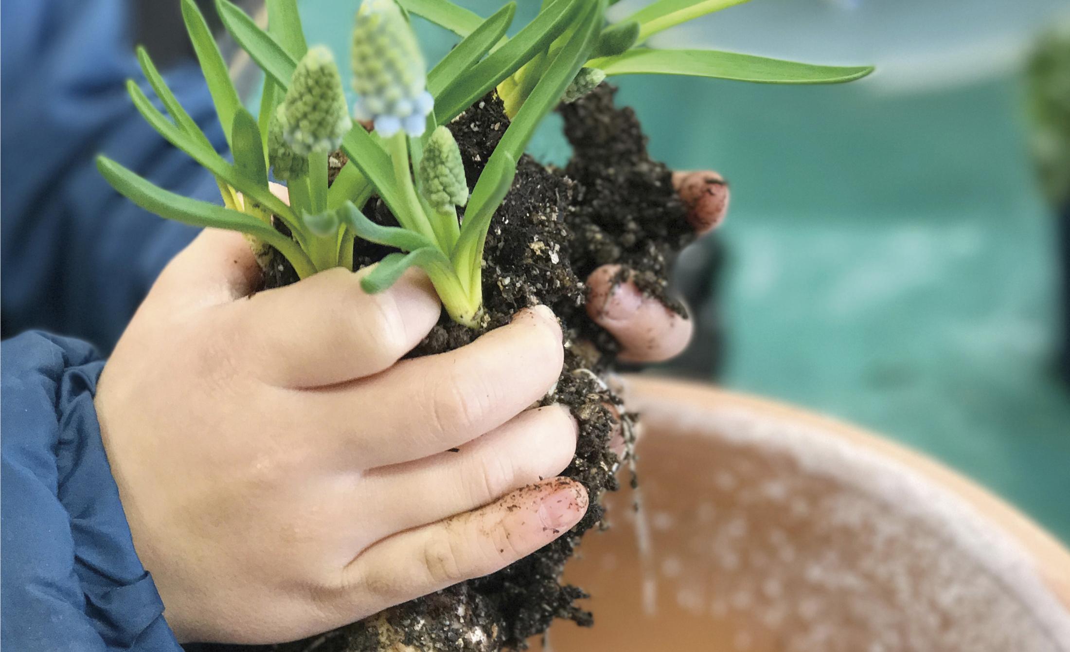 庭育 自然といっしょの未来を、子供達とつくる